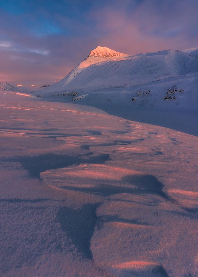 Svalbard 11